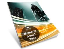 Memoria Anual Sofofa 2013